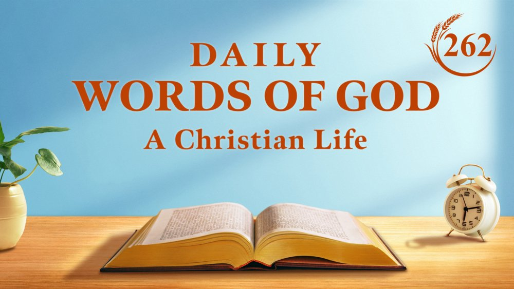 Work and study are important, but pray-reading God's word every day are more important. #GodsLove #mercy #Christian #WorshipGod #blessed #church #GodsWord #truth #Devotion  🔗