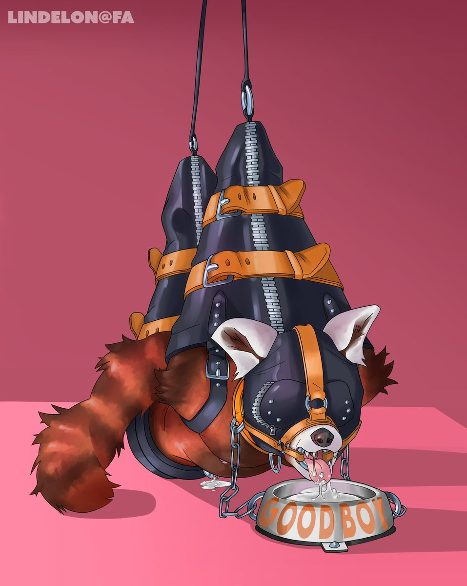 After his fellow pet has earned their release - he's strung up, chained down, and allowed to enjoy his reward~... - - #furrynsfw #furryart #nsfw #bdsm #bondage