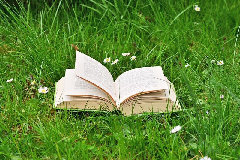 test Twitter Media - Dicen que en verano el tiempo se detiene y nos permite entregarnos a la lectura de los clásicos, recorrer esas páginas que nos siguen hablando a pesar de los años. Aquí van unas sugerencias para los amantes de la poesía, del viaje o de la novela histórica https://t.co/RHzQlaG9Kw https://t.co/pAY8u2NDsr