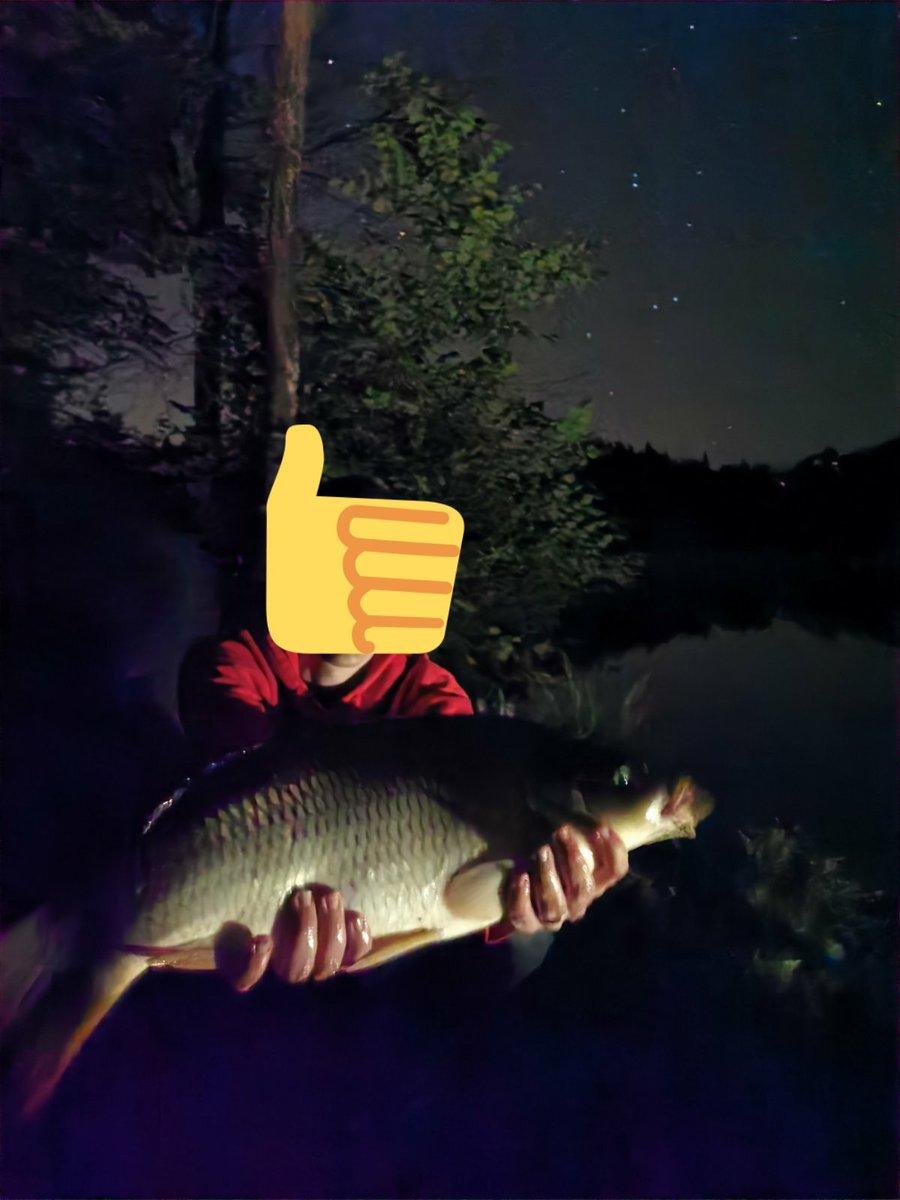 Why we <b>Love</b> night #fishing !!  #carpfishing #carp #karp #ribolov #angling #night https://t.co