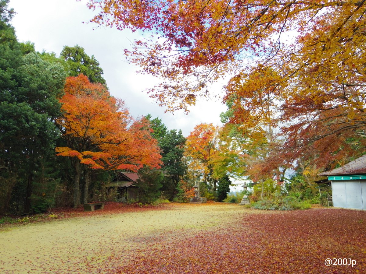 No.55 Chihaya-jo #castle Site of Sannomaru and Stone Monument 千早城 三の丸跡と石碑  #chihayaakasaka