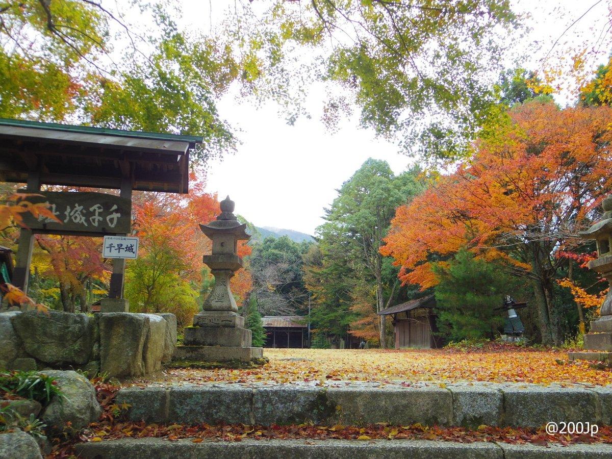 No.55 Chihaya-jo #castle  Site of Ninomaru and Chiyaya-jinja shrine 千早城 二の丸跡と千早神社  #chihayaakasaka