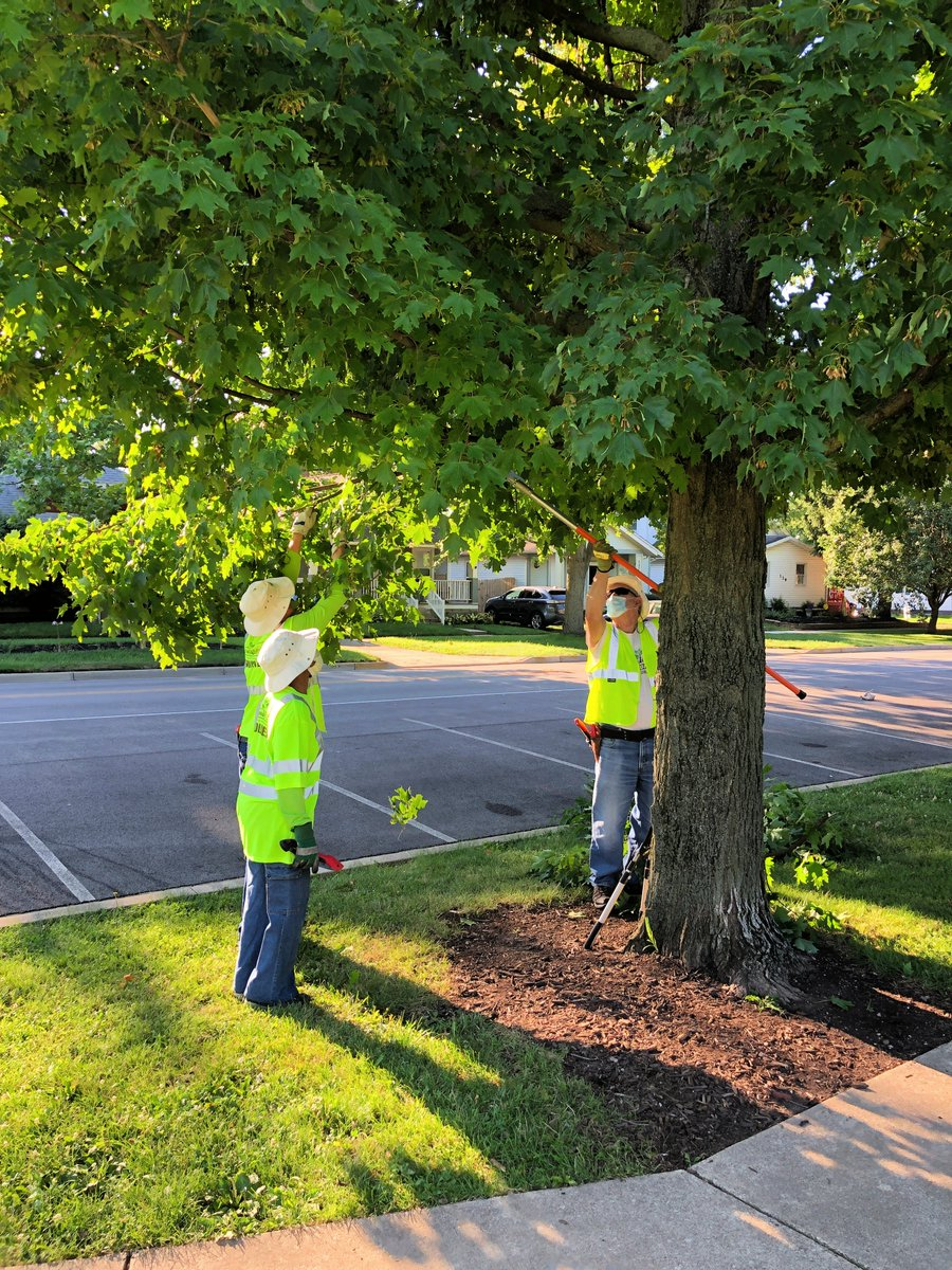 Special shout out post to the Tree Lafayette crew! Without this wonderful team the beautification and upkeep of Greater Lafayette would not be possible. Thank you for your hard work!