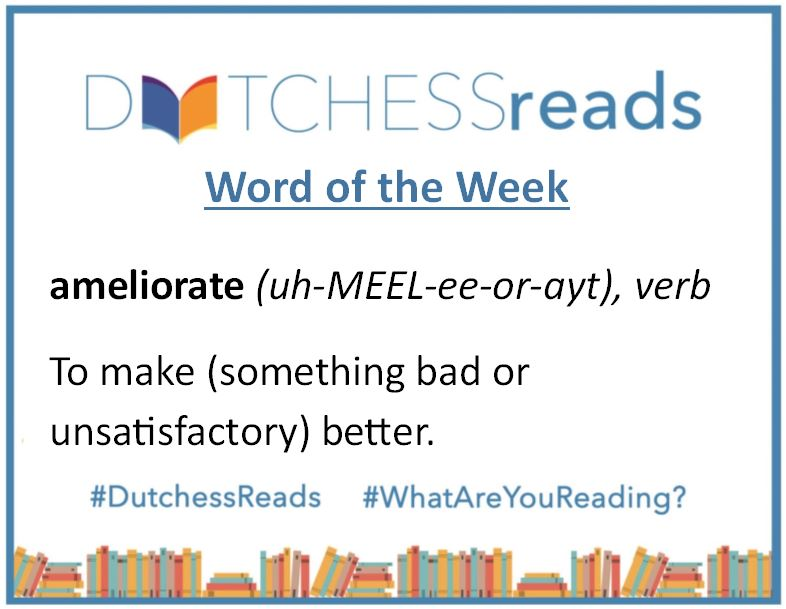 Wondering what our latest #DutchessReads Word of the Week is? It's