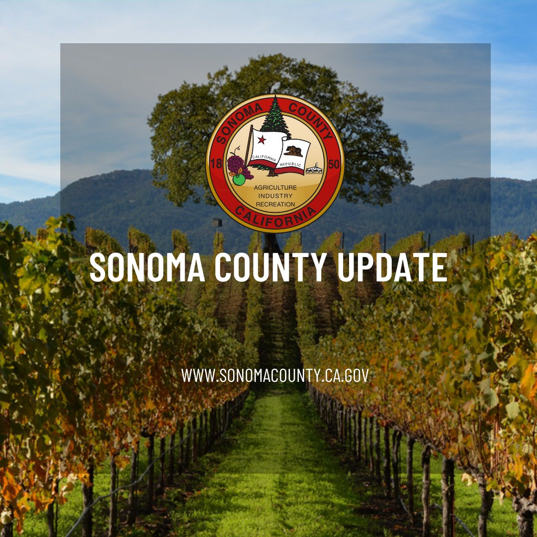 "The weekly web segment, ""Five Questions with Chair Gorin"", will resume next week with Sup. Susan Gorin, Chair of the Board of Supervisors. View last week's interview with Alma Magallon, VP of the Hispanic Chamber of Commerce of #SonomaCounty here:"