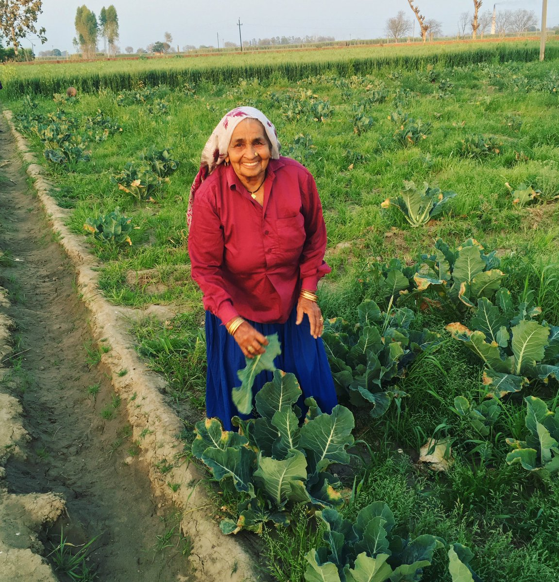 गाँव की धरती है पेट भरती है 🤗