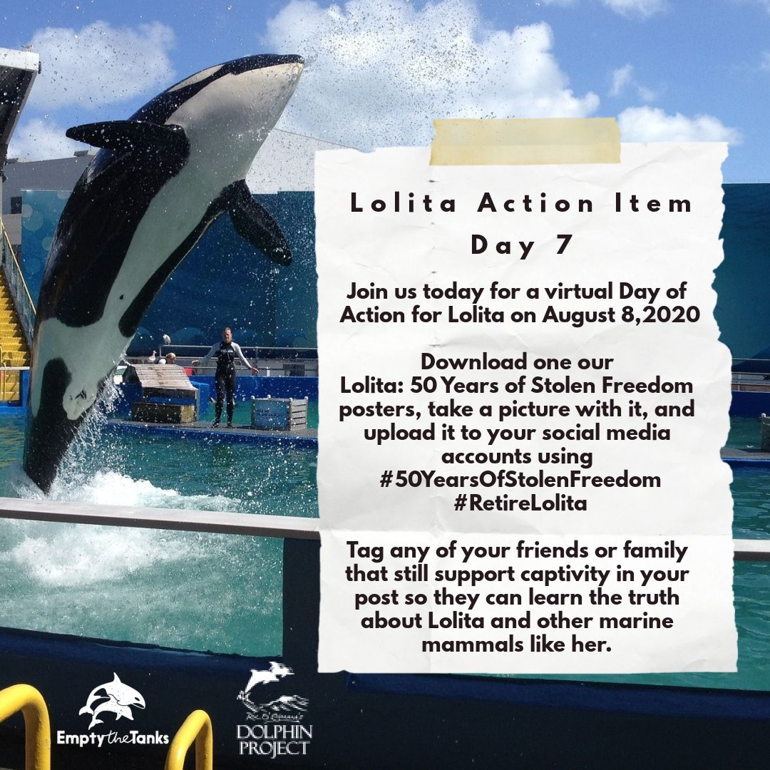 Today's the day! Join us for a virtual Day Of Action For Lolita! You can find resources at  that will  help bring attention to her #50YearsOfStolenFreedom at #MiamiSeaquarium. It's time to #RetireLolita! #DolphinProject #EmptyTheTanks