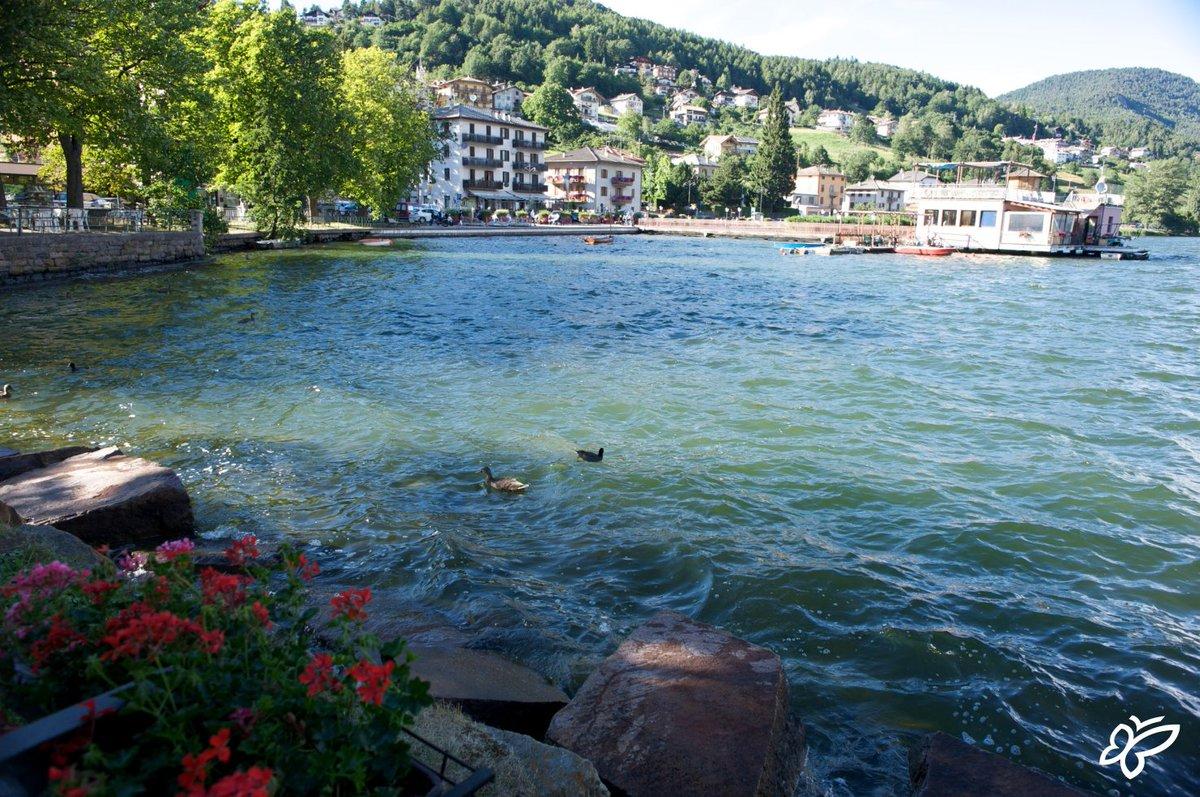 test Twitter Media - Nelle giornate di sole la vacanza si sposta sui laghi dell'Altopiano! 🚣♂️ ☀️ 🐟 Biowatching, canoa, sup, pilates e tanto altro...è impossibile stare fermi! Scopri: 👉Il Blue lakes Festival: https://t.co/8uxNWyqZ2c e gli sport acquatici: https://t.co/t5Gu0Ggpme   #visitpinecembra https://t.co/3X2xYXd8Sw