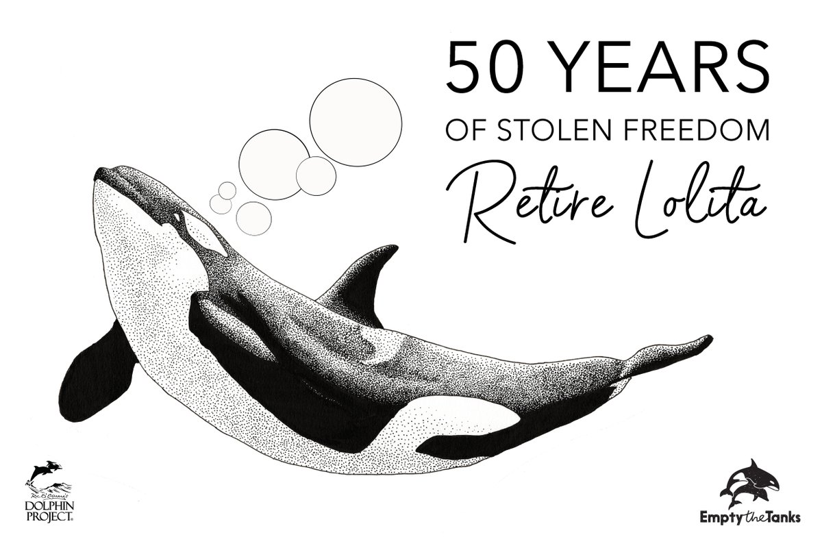 It's time to retire Lolita. Take Action today at:  #50YearsOfStolenFreedom #RetireLolita