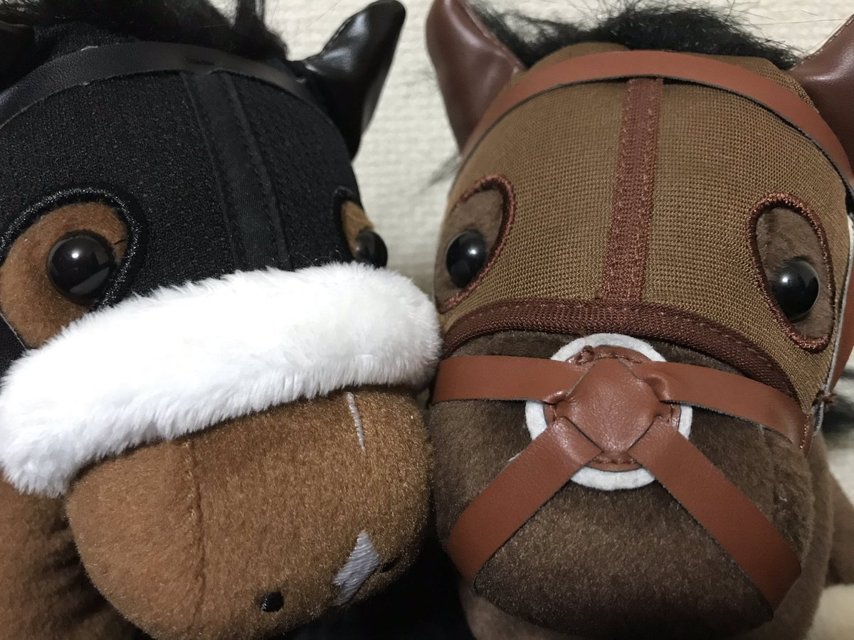 test ツイッターメディア - おっはー‼️☀️🤗  今日はマリアライトの息子が札幌の新馬でデビューするよ‼️✨🐴😆  マリアライトと言えば宝塚記念でドゥラちゃんとキタサンブラックをまとめて差し切り勝利したすんげ〜仔だったんだ‼️✨🐴😱 https://t.co/9SPPR8uHld