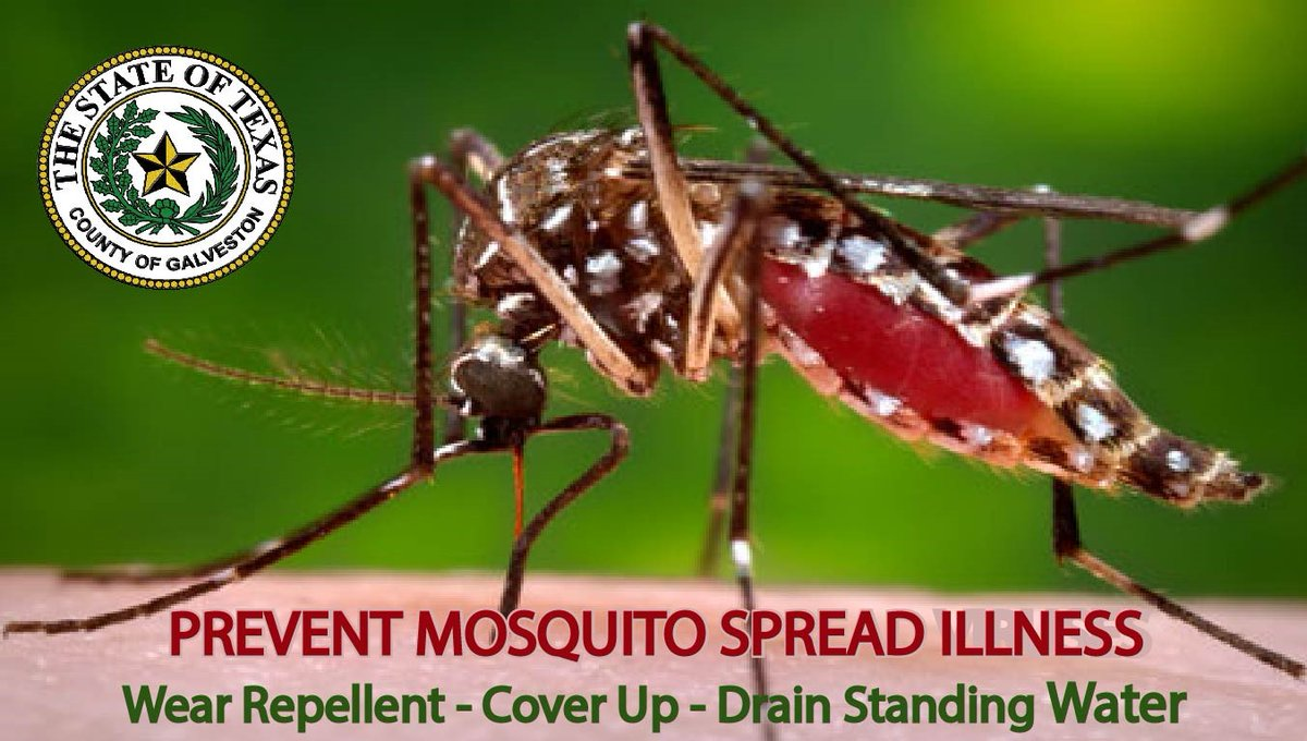 The tropical rainfall was a welcome break from hot summer days, but also brought in a new crop of skeeters.  Galveston County Mosquito Control continues to work diligently to protect our community.  For info on how you can help, visit:  #GalvCoPrepares
