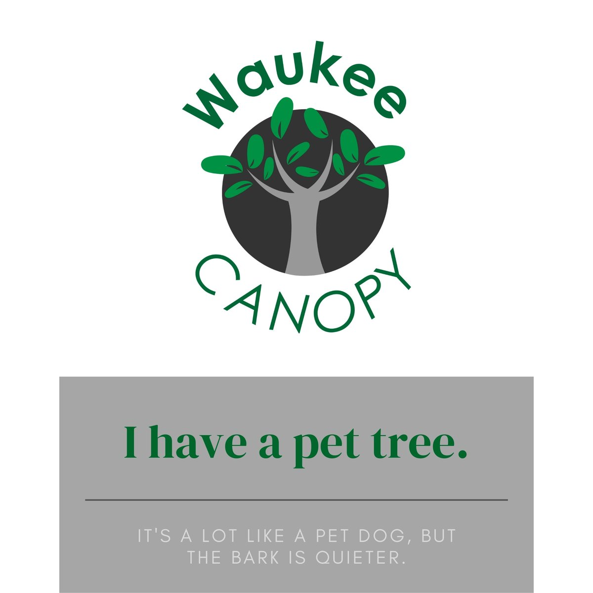 Get low-cost trees!  Starting Aug. 15 at 8 a.m., WAUKEE RESIDENTS can order up to two trees through the Parks & Recreation Department's Waukee Canopy program. Choose from nine species.  For more information, visit .