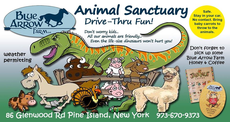 Have you ever been to a Drive-Thru Animal Sanctuary?! Well, now is your chance! Visit Blue Arrow Farm and get a chance to see all their friendly animals up close, from the comfort of your car. Check out the details here: