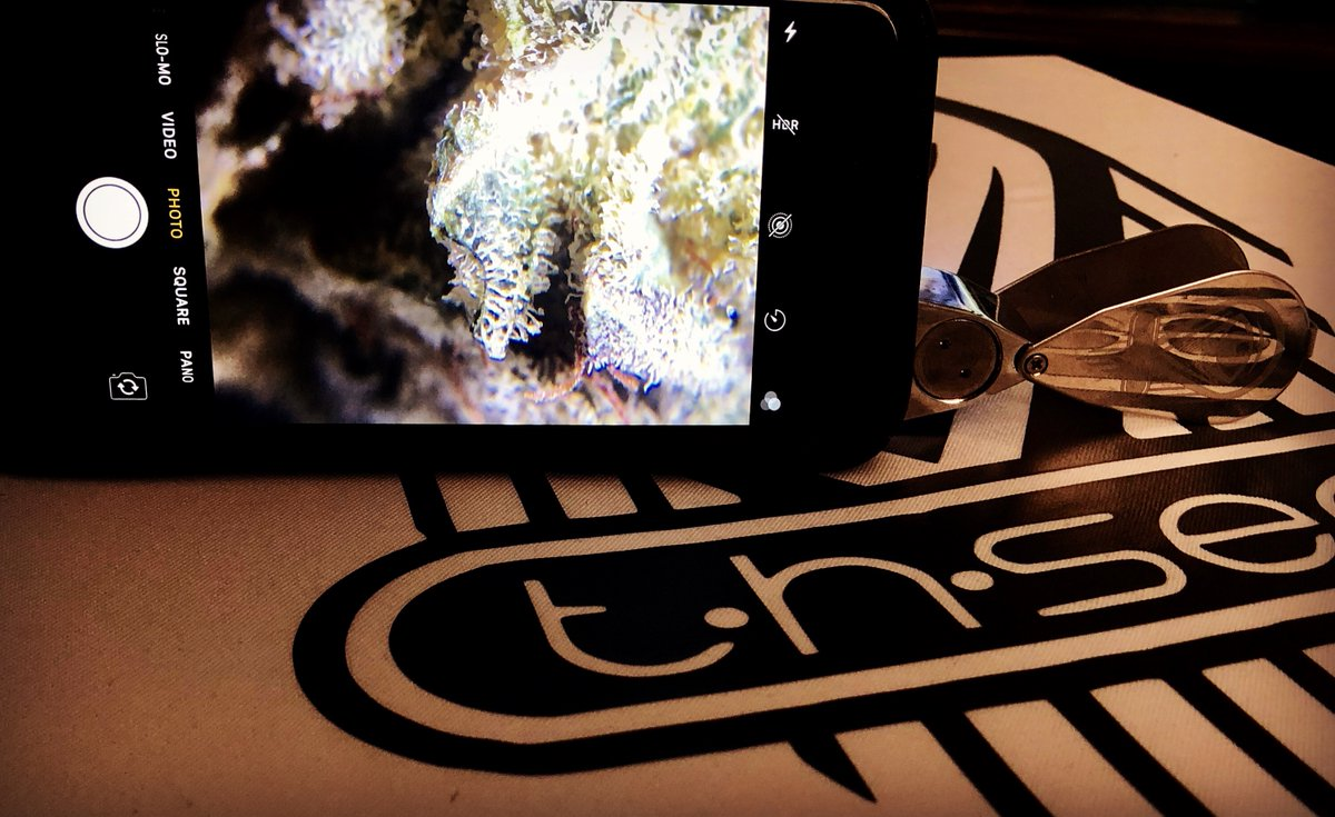 Live budshots! Easily take high resolution macro photos/videos of your marijuana using any cell phone camera!  #thsee