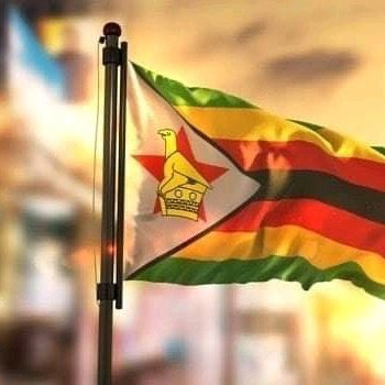 Fellow Africans thank you for standing with the People of Zimbabwe! Dignity for the African Child #ZimbabweanLivesMatter #AfricanLivesMatter