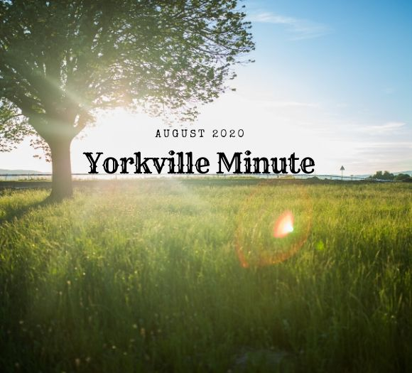 Check out the August 3rd Edition of the Yorkville Minute Newsletter! #TheYorkvilleMinuteNewsletter-August3,2020Edition