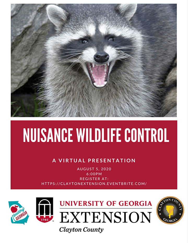 Wednesday, August 5th at 6 p.m., learn how to prevent wildlife from becoming a nuisance, (deer, squirrels, raccoons, etc.) and measures to take if animals do become a nuisance to your household, garden, or landscape.  Register here:
