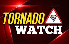 NWS/1/I&F: A Tornado Watch has been issued for Anne Arundel, Baltimore, Calvert, Caroline, Cecil, Dorchester, Harford, Kent, Queen Anne's, Somerset, St. Mary's, Talbot, Wicomico, Worcester Counties, and Baltimore City until noon EDT today.