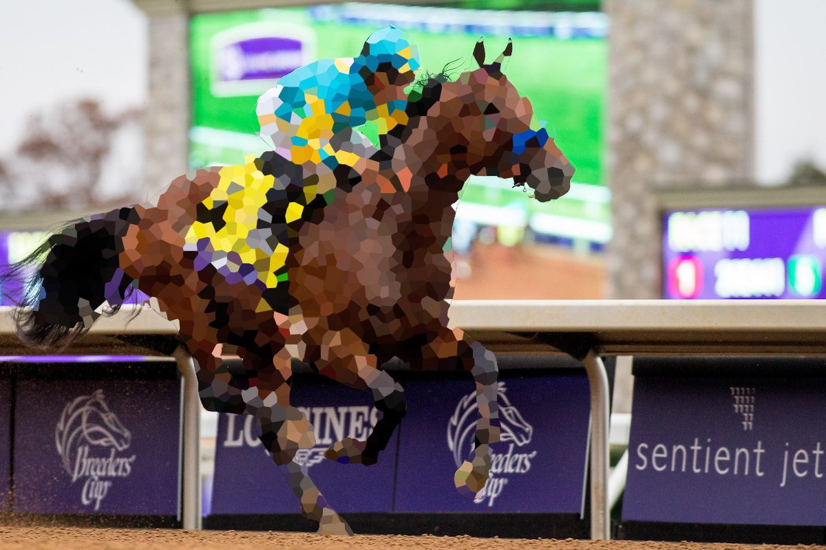 Can you name this horse, jockey, #BreedersCup race and track? 🏇 #TriviaTuesday