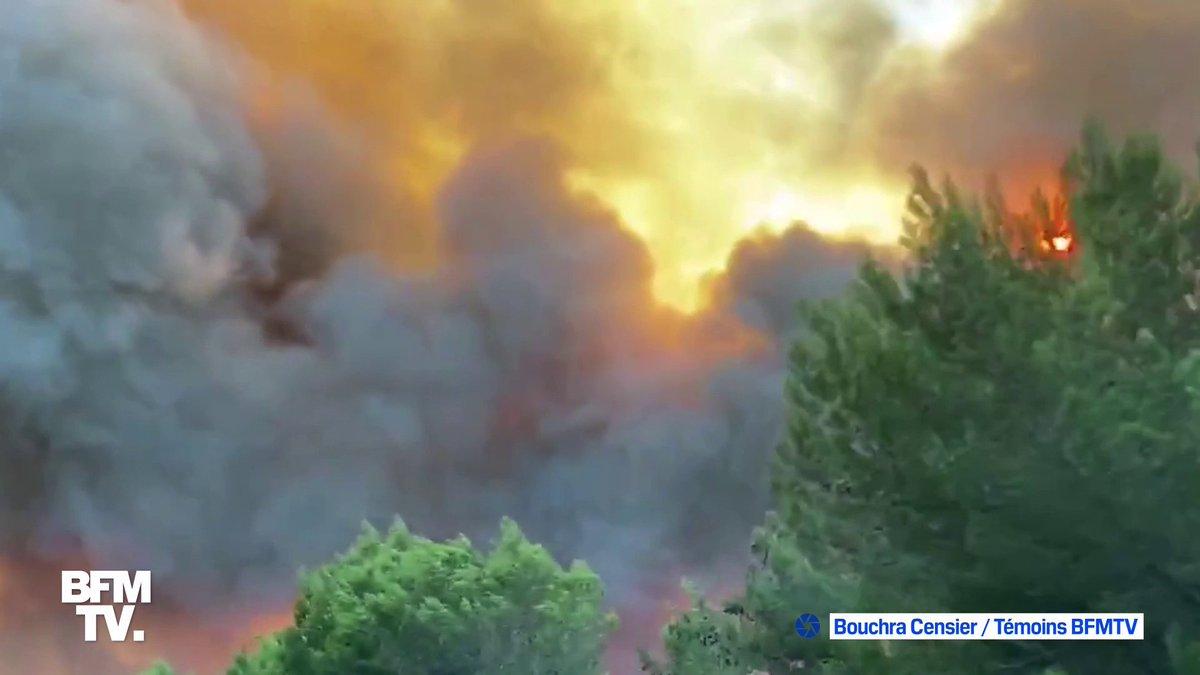 incêndio na França agora. entre Martigues e Port-de-Bouc, nos Bouches-du-Rhône, na floresta de Meríndole. 1200 bombeiros foram mobilizados pra conter o fogo. 300 hectares já foram consumidos.