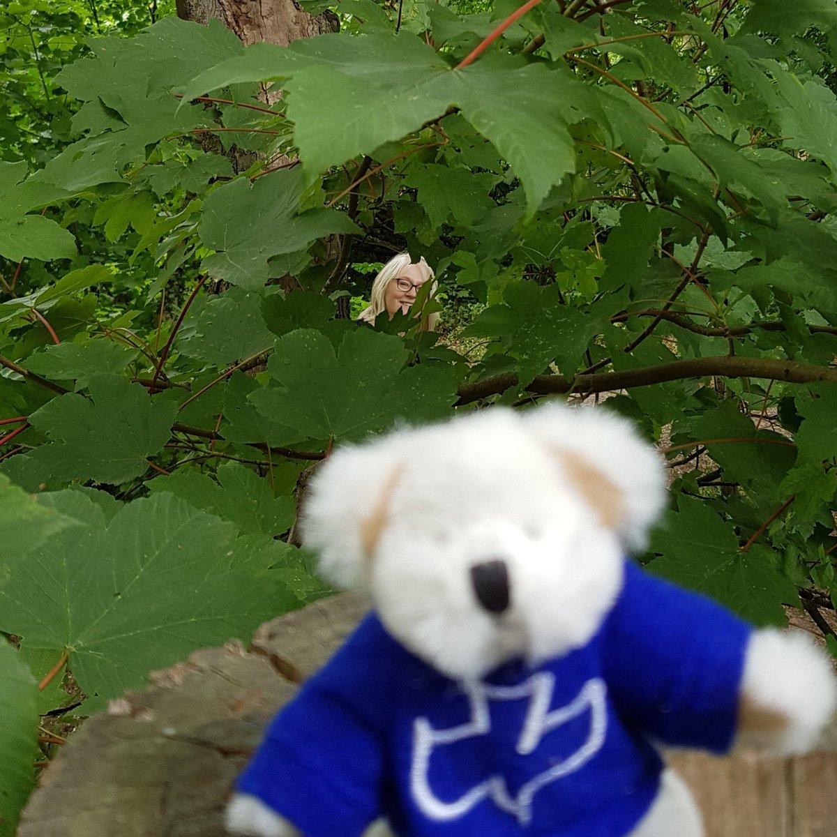 Can you see her? #bearladies #therepairshop #wealddownmuseum #woodland #teddybearladies #teddybear #hideandseek #lunchtime  @wealddownmuseum