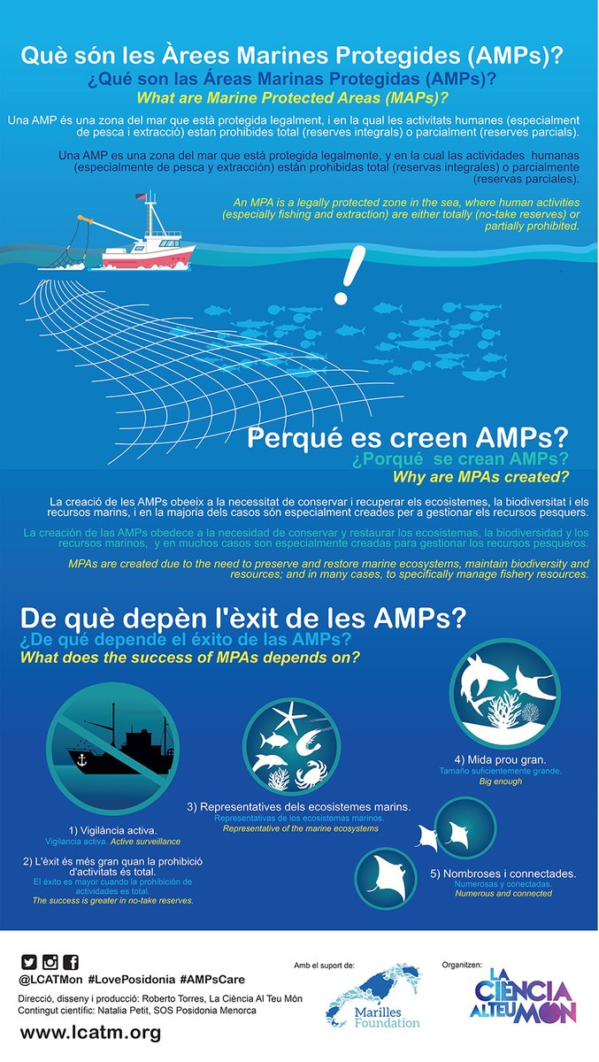 test Twitter Media - Què són les #ÀreesMarinesProtegides ?  ¿Qué son las #ÁreasMarinasProtegidas ?  What are #MarineProtectedAreas?  Material #AMPsCare #Balears #Posidonia  @LCATMon @MarillesFund    ⬇️Poster https://t.co/QqnHE3KsM4 https://t.co/NoWLchRLdk