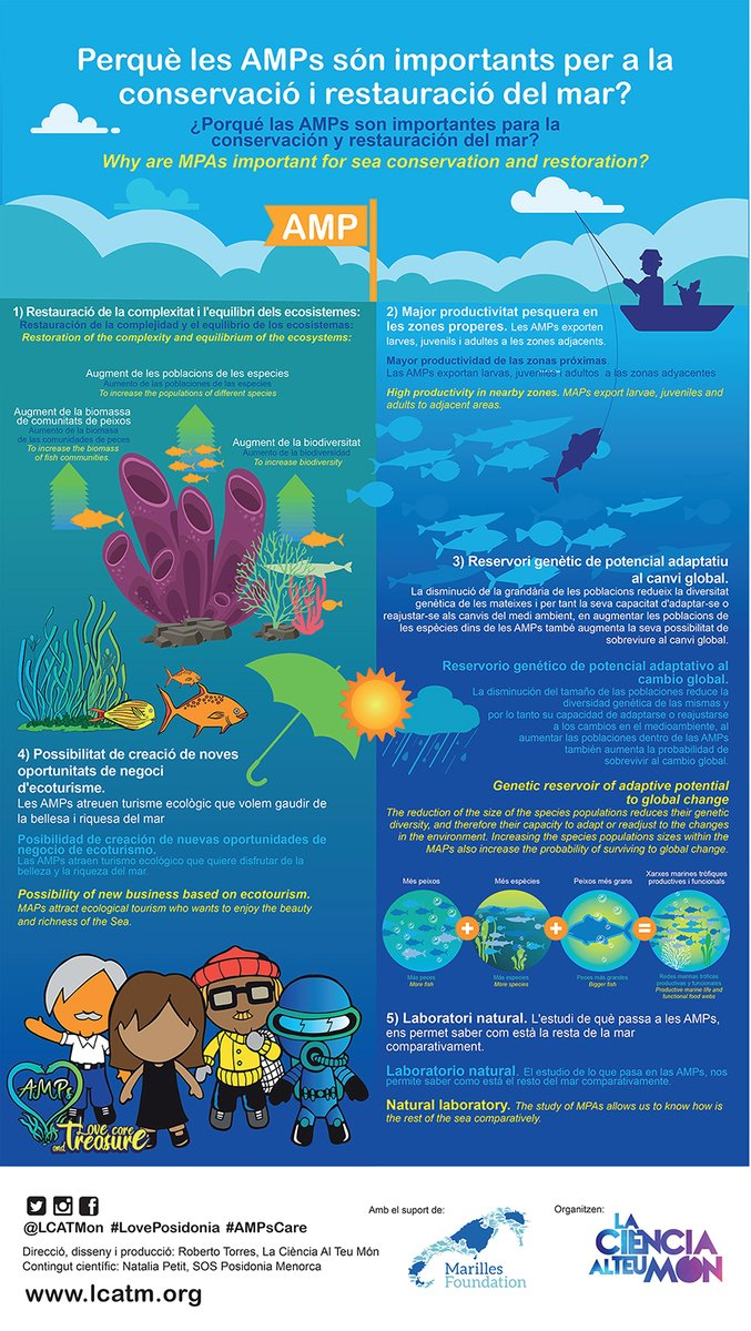 test Twitter Media - Perquè les AMPs són importants per a la conservació i restauració del mar?  ¿Porqué las AMPs son importantes para la conservación y restauración del mar?  Why are MPAs important for sea conservation and restoration? #AMPsCare #Balears #Posidonia  ⬇️Poster https://t.co/QqnHE3KsM4 https://t.co/ye1vUV5DvI