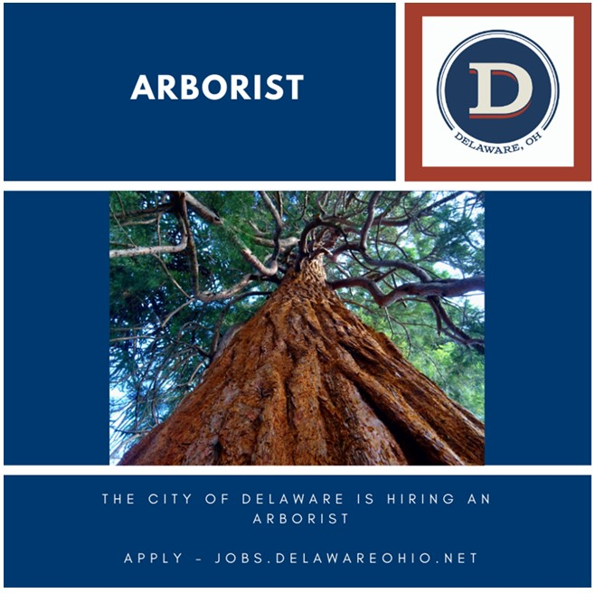 We are looking to fill our vacant City arborist position. Apply today!
