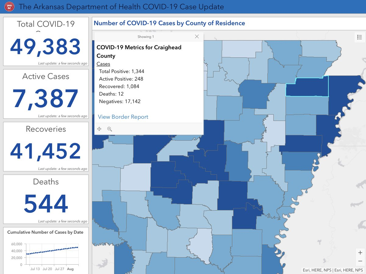COVID-19 numbers for 8.9.2020 for Craighead County.