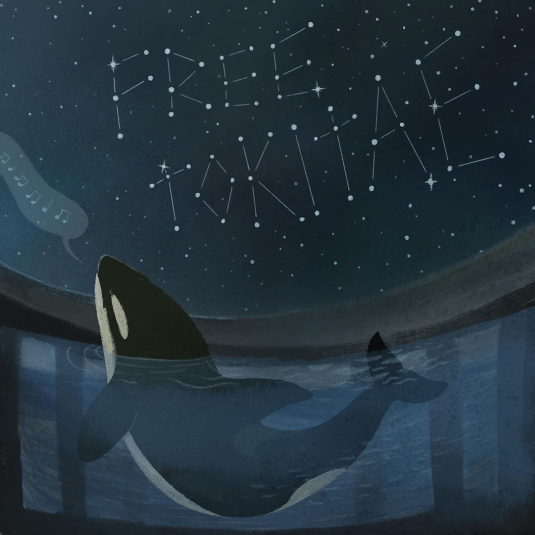 Missed our #50YearsOfStolenFreedom event for Tokitae/Lolita? Don't worry! You can take action for her any time! Head to  to lend her your voice! Beautiful artwork by Stephen Alford/theonceandfutureforest. #DolphinProject #RetireLolita #EmptyTheTanks
