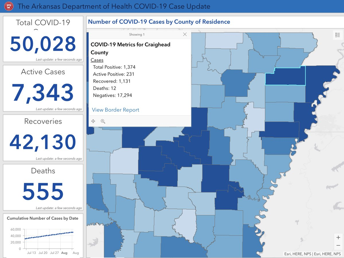 COVID-19 numbers for 8.10.2020 for Craighead County.