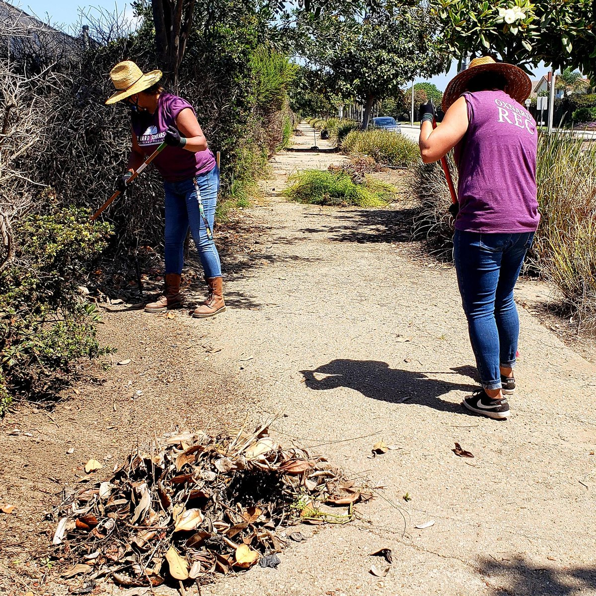 Here are a few more pictures of the Oxnard Recreation and Community Services staff volunteers serving during Neighborhood Pride Weekend. They pruned, weeded, raked and cleaned off the sidewalk near the corner of Doris and Patterson on Friday, filling a total of 15 bags.