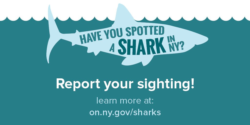 In New York we are fortunate enough to share our coastal waters with a diverse abundance of interesting marine life, including #sharks!   If you see a #shark, report your sighting using the DEC Shark Spotter digital survey:   #SharkWeek 🦈