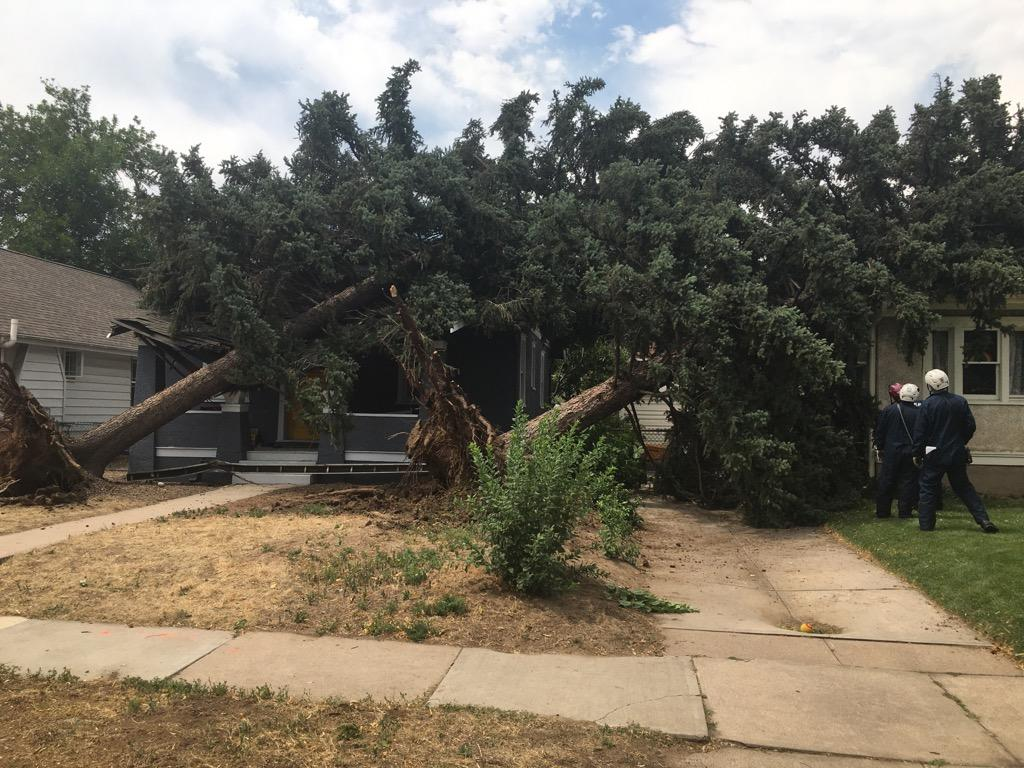 #DenverFireDepartment is on scene in the University Hills neighborhood after  severe wind gusts blew materials and outdoor furniture around, severed power lines, & toppled trees. If you have any safety concerns or injuries call 9-1-1 #BeSmart #BeSafe @CityofDenver @DenSafetyDept
