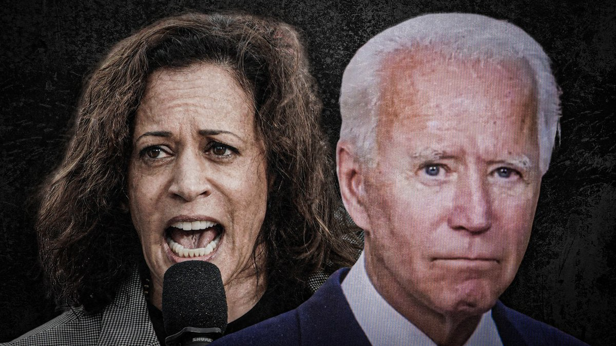 .@JoeBiden and @KamalaHarris will dismantle the Second Amendment.