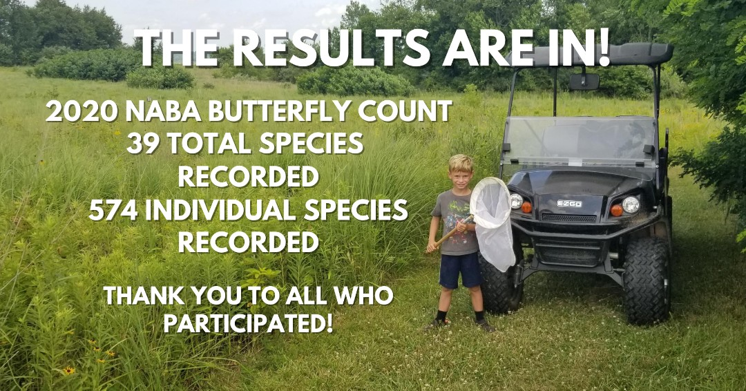 The results are in for this year's North American Butterfly Association (NABA) Butterfly Count with 39 total species and 574 individual species recorded!   Thank to all who participated!