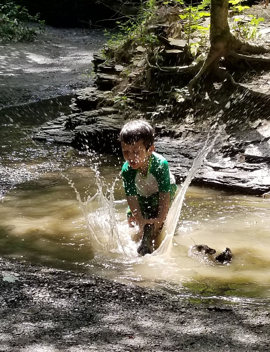 Splish, splash, I was taking a bath 🛀 This cutie splashed about at Highbanks 😁 Post your favorite splishing and splashing photos below! #cbusmetroparks #highbanks #nature #summer