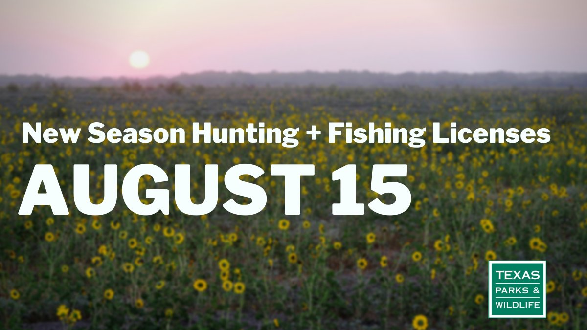New season #Texas hunting and fishing licenses go on sale Saturday, Aug. 15:   100% of license fees support fish and wildlife management, habitat restoration and land conservation.   #TexasHunting #TexasFishing
