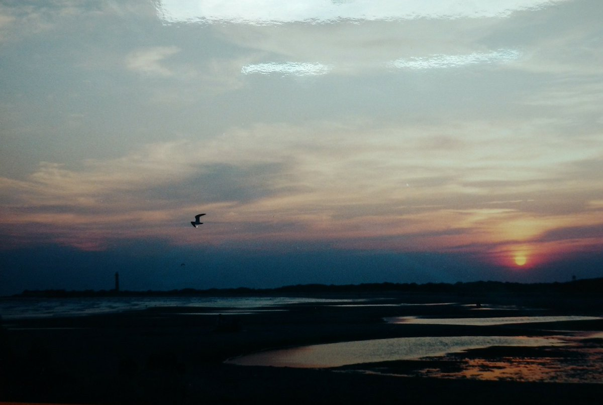 RT @GloriaBB2: August, 1995. Cape May Sunset. #ThrowbackThursday @NJGov  Seagull and Lighthouse included.