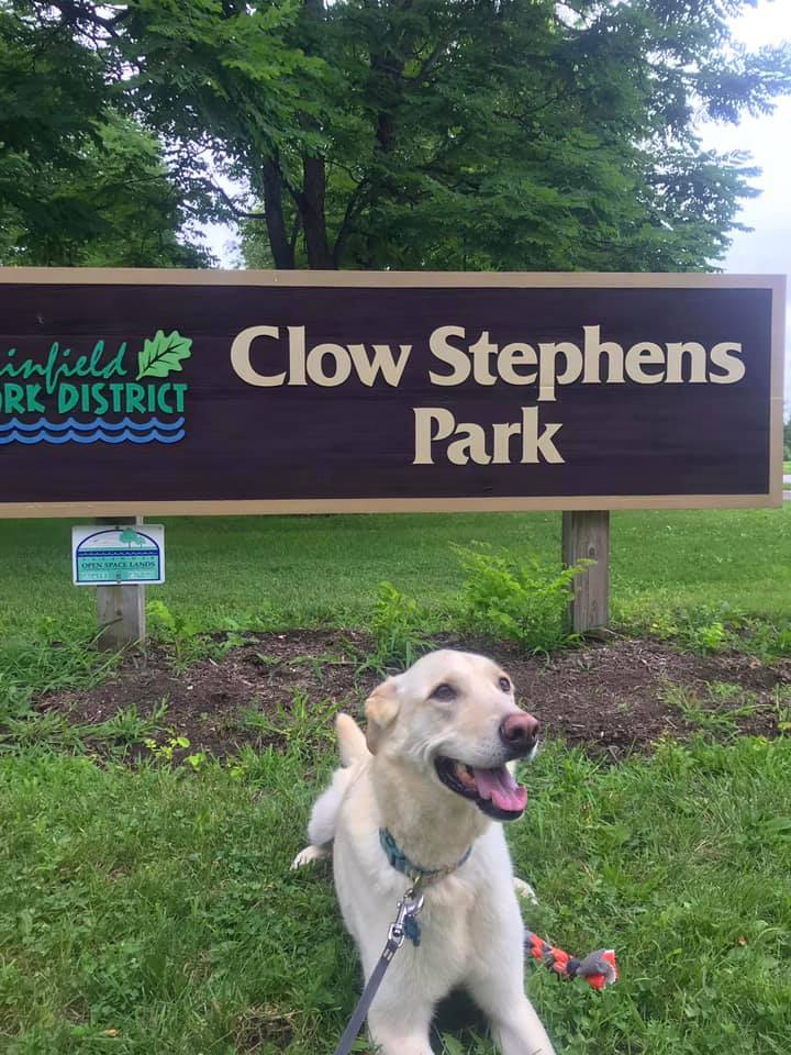 Snap a photo of your canine friend at a Plainfield Park District Dog Park and share it with us before Aug. 31. The best photos will win a prize. Read all of the rules and details...  Photo: Beth Rosenbaum's dog Sooner at Clow Stephens Dog Park