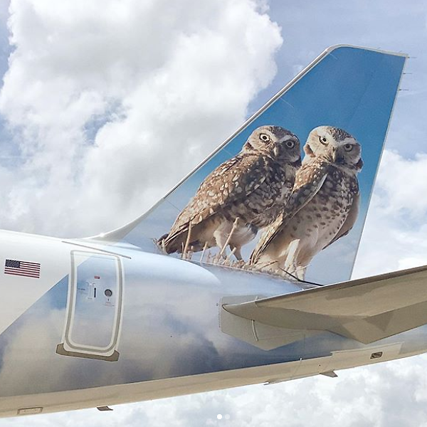 Frontier Penny Plus Fares for $11  Plus Friends Fly Free!
