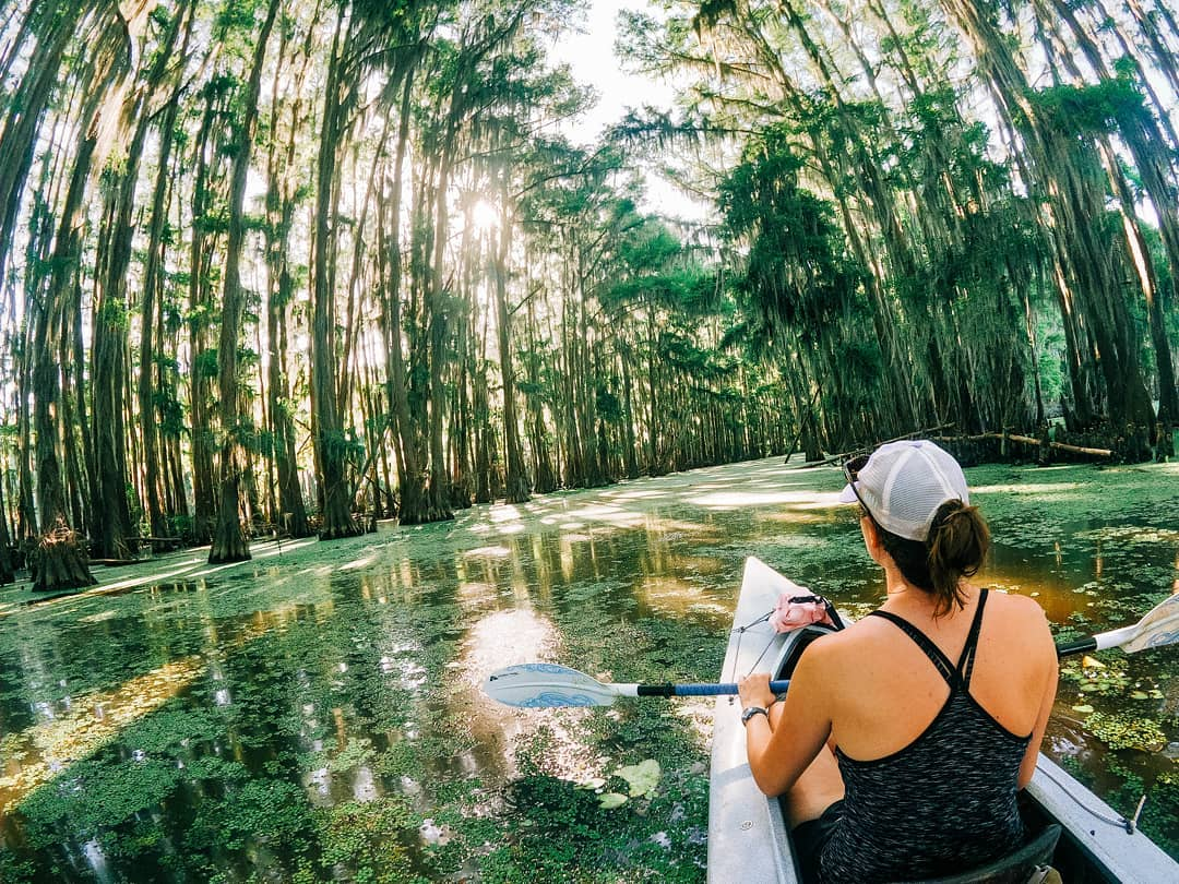In need of a nature getaway? Take a paddle through the Piney Woods:   📷 by: @kadams605  We hope you enjoy this virtual Texas escape and remember to wear a mask to keep yourself and others healthy so we can get back to exploring TX responsibly.