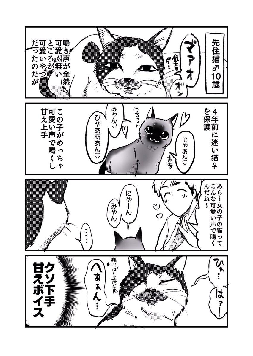 椎名 林檎 大城 チャンス