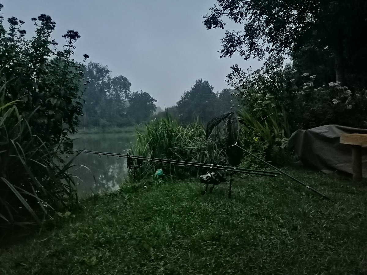 Good morning from the pond #carp<b>Fishing</b> https://t.co/oavXiaPZDq