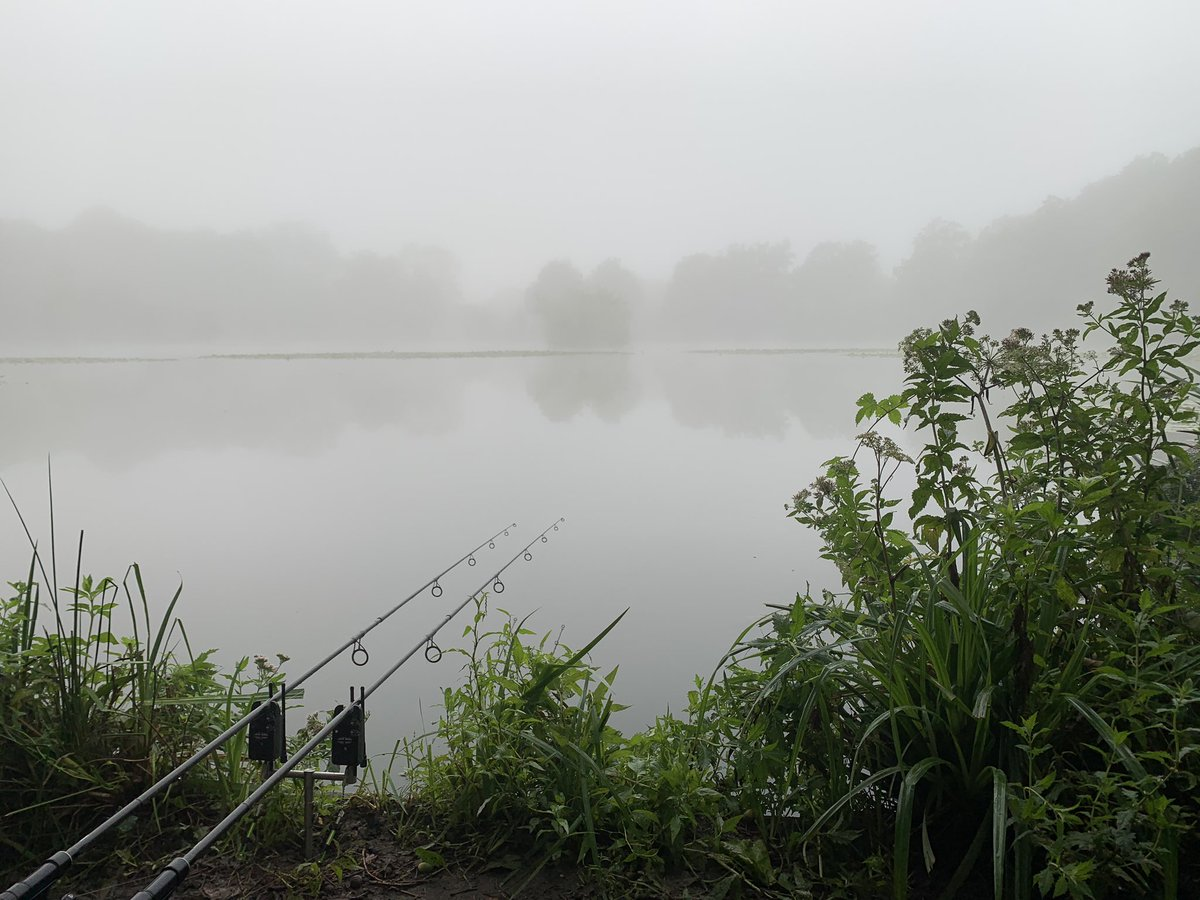 Morning wold #carplife  #<b>Carpy</b> #mistymornings #carpfishing https://t.co/tEO0YcbPO4