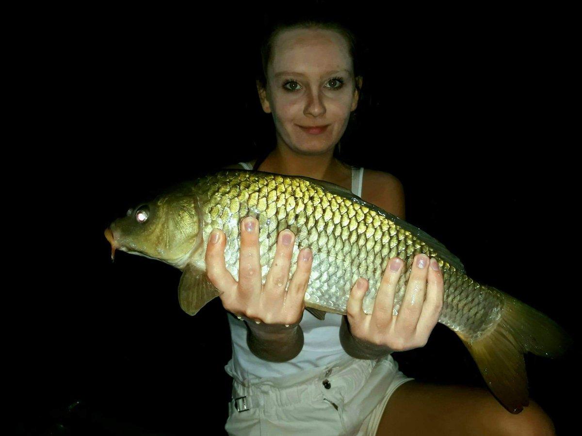 Mój niedzielny złowiony okaz 😜🐟🎣 #fishing #fishinglife #carp #carpfishing https://t.co/O5