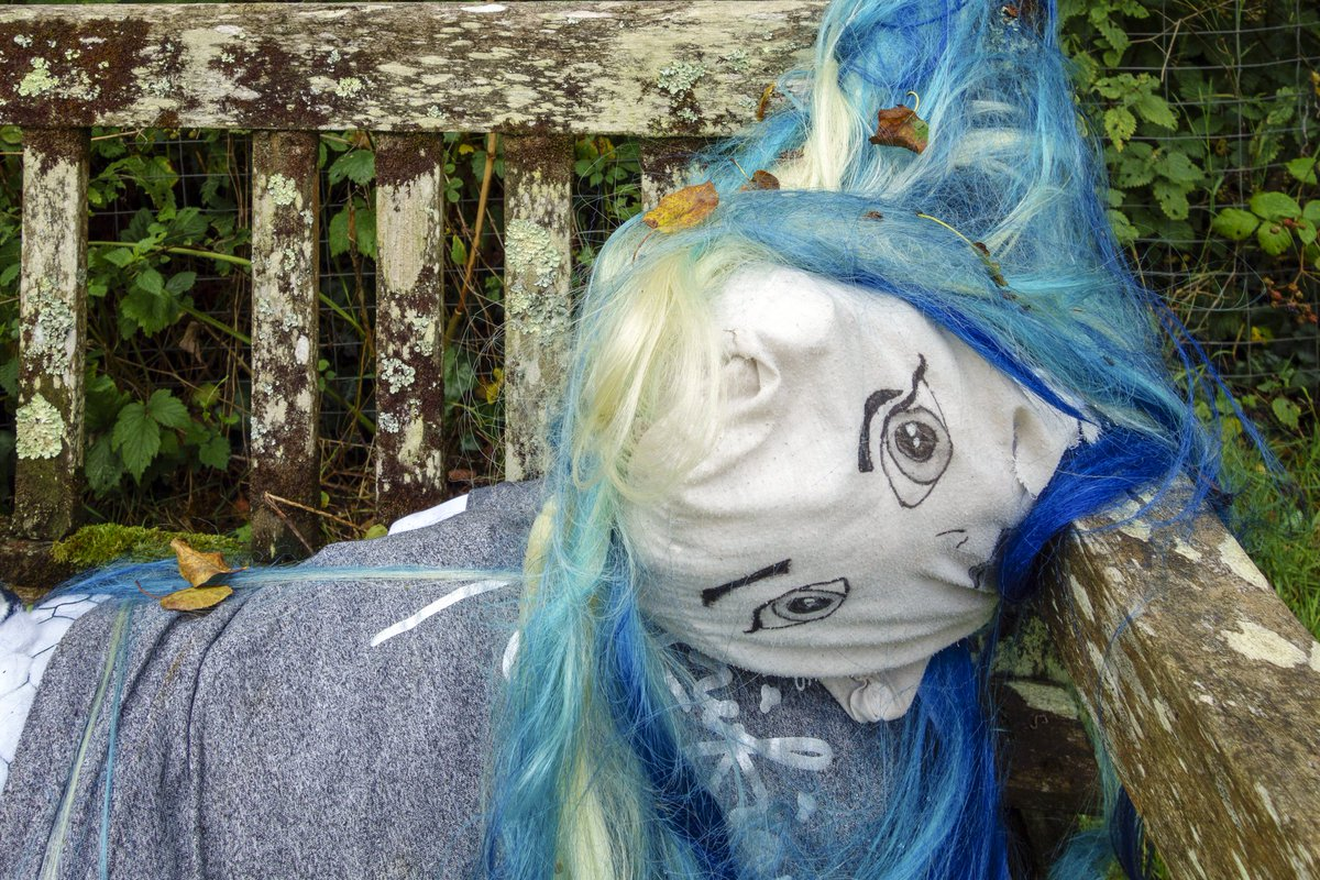 test Twitter Media - R O U G H _N I G H T How we're all feeling right now... Various scarecrows / dummies are located in Ermington to highlight, and pay thanks to, the work of key workers during the COVID-19 chaos.  #Ermington #Devon #ParkBench #Dummy #ScareCrow https://t.co/S8UvkWUhsH