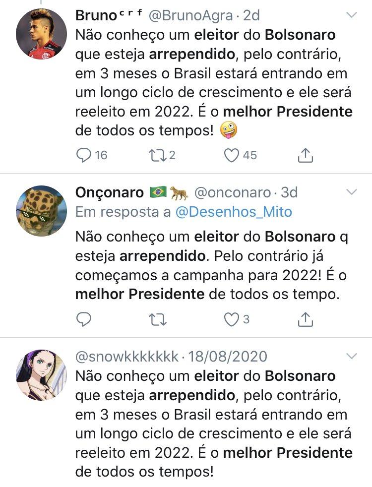 Não conheço um robô do Bolsonaro  que esteja arrependido.