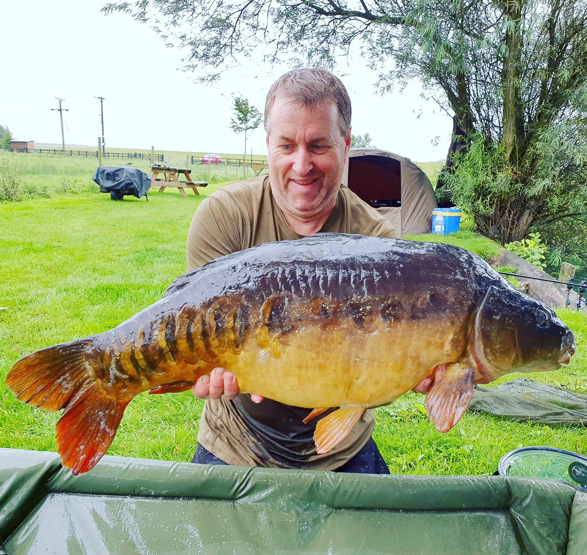 Stunning <b>Mirror Carp</b> from Newhay Lakes #mirrorcarp #carp #carpfishing #craftycatcher @craftyc