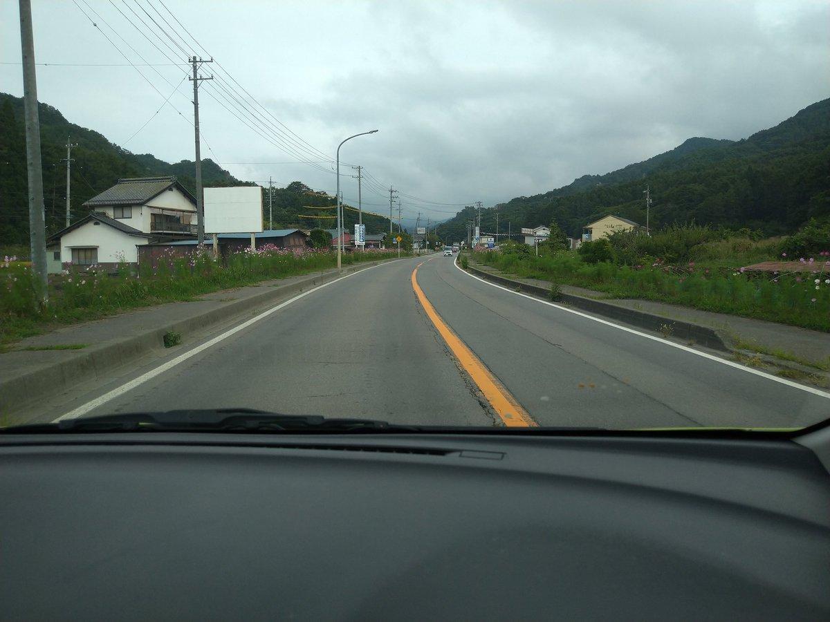 test ツイッターメディア - 佐久のある地域を車で走ってんだけど道の両側にずーっと同じ花咲いてるっす!この花コスモスだよね? https://t.co/tclIc3UTtF